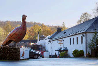 the_famous_grouse_whisky1