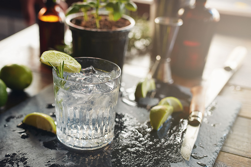 New Western Dry Gin – 10 außergewöhnliche Sorten