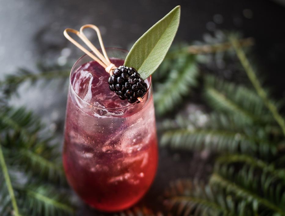 Unsere 10 beliebtesten Gins